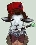 Matt Smith Llama
