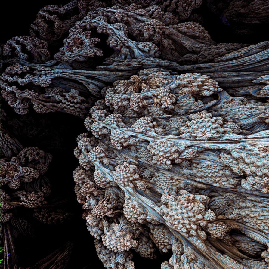 Shell-sea by MANDELWERK