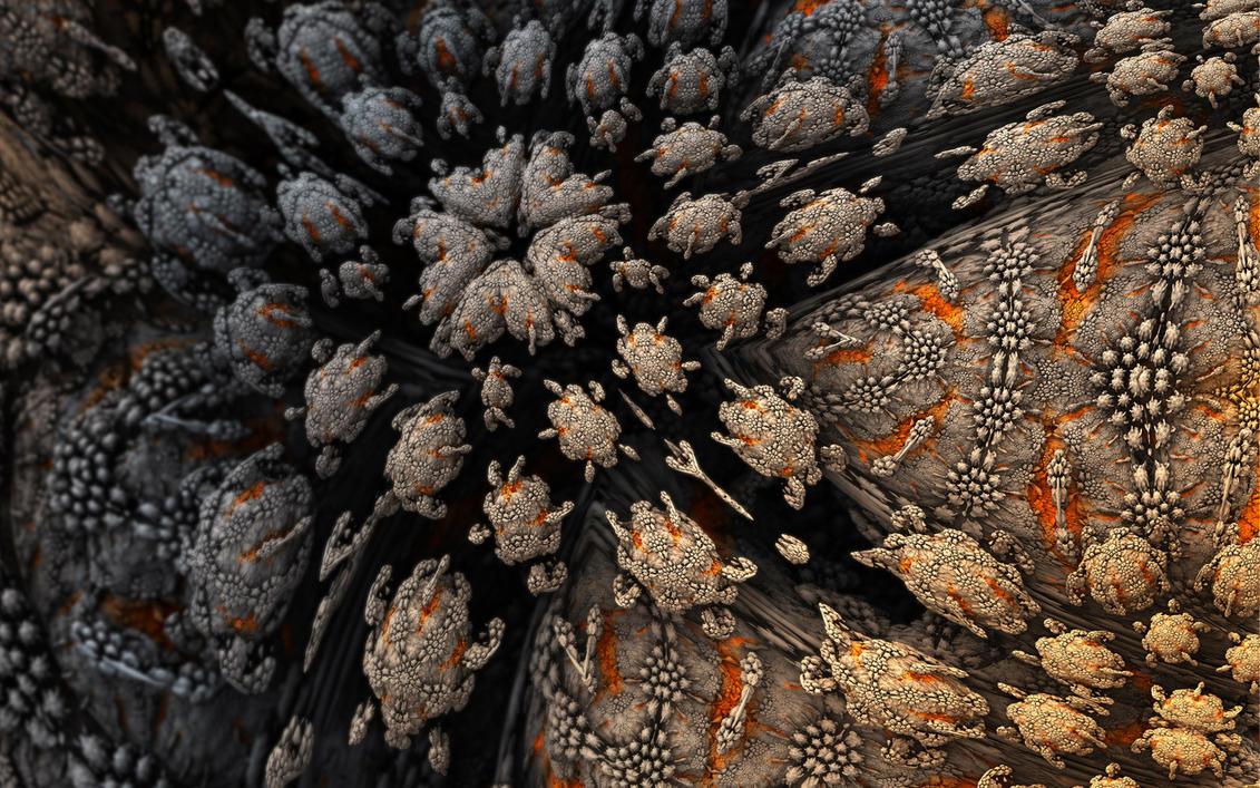 Amoebae Ornamentalis by MANDELWERK