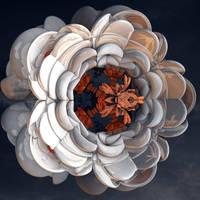 Flora Magnoliophyta Fractalica by MANDELWERK