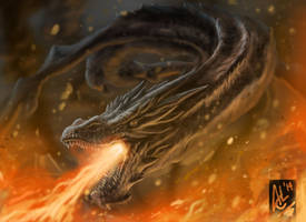 SMAUG the Dragon by Trevone