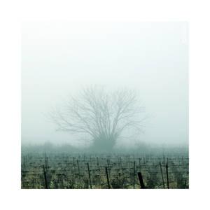Ghosts - Pt I