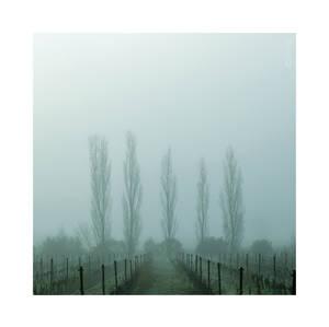 Ghosts - Pt III