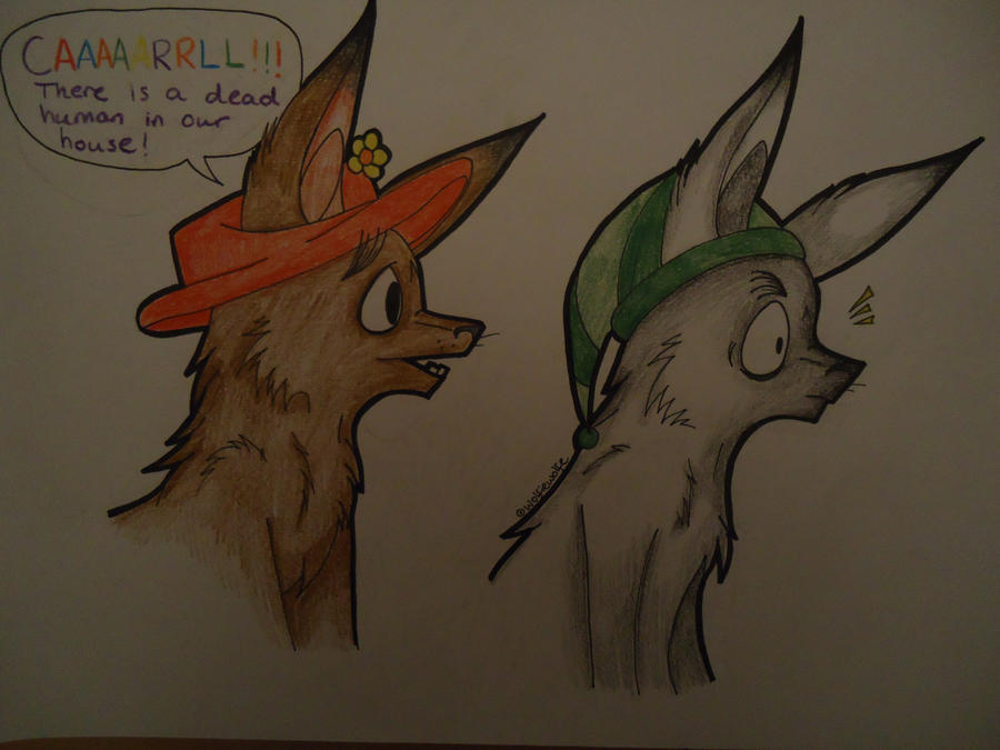 Llamas With Hats by Glados