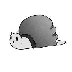 Grey the Snail