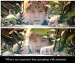 Lord of the Rings - Sam Meme