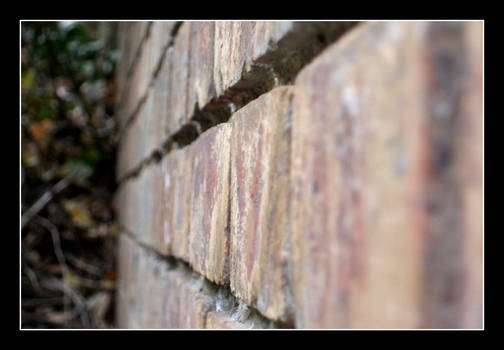 Brick in the Wall...