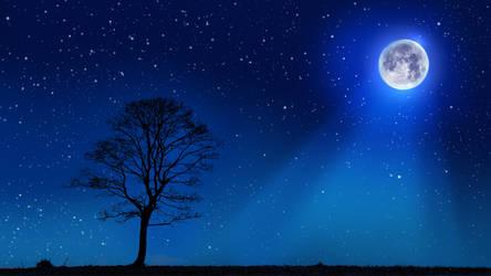 Moonlight Tree Wallpaper Remake
