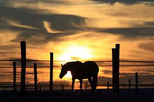 Sundown by lichtschrijver