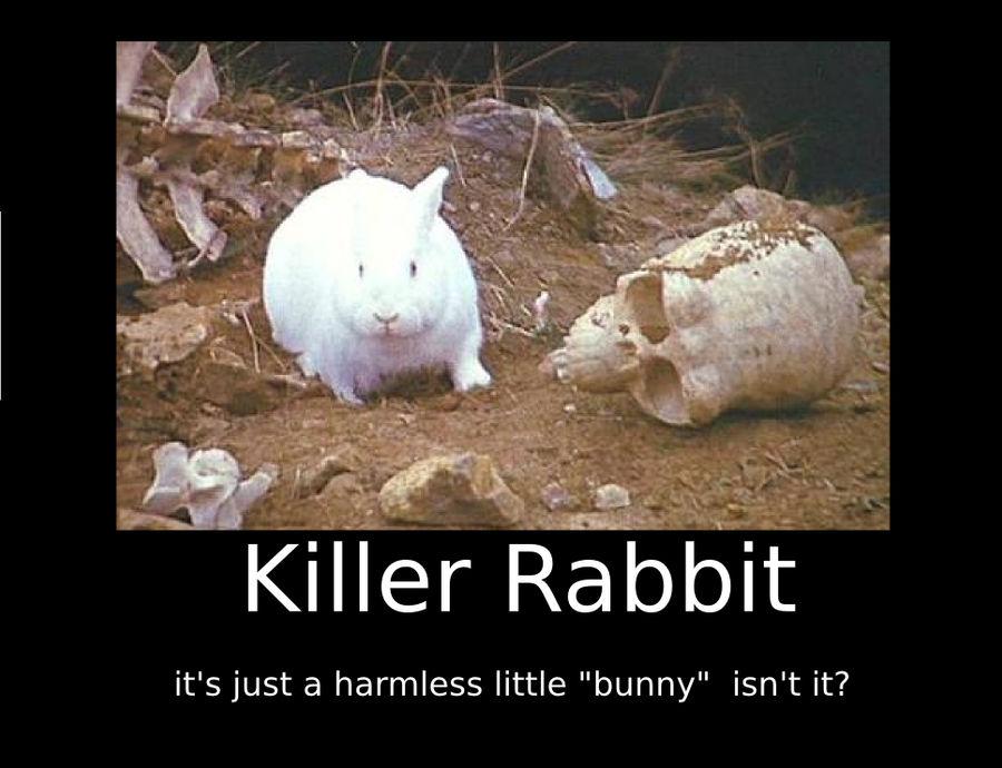 Killer rabbit Motivational