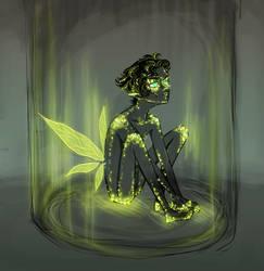 firefly by miryah