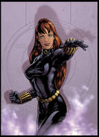 Black Widow by Guy-Bigbelly