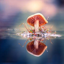 Mushroom Island by AdrianGoebel