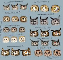 Owl style pratcice by Vanzkie