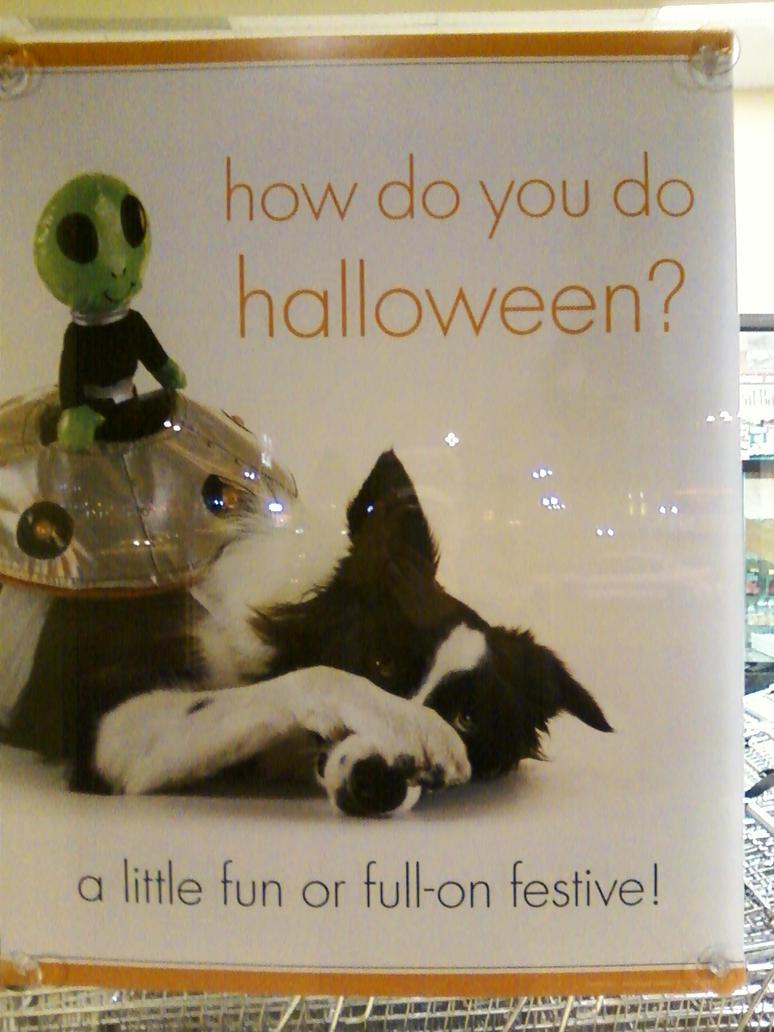 Dog Costume by ReverendAspen