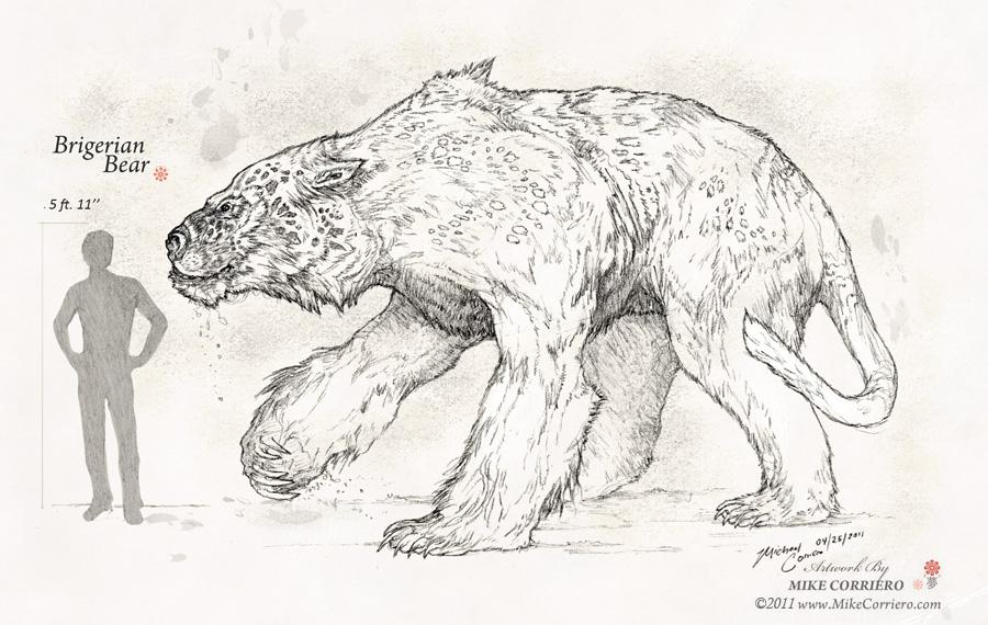 Brigerian Bear by MIKECORRIERO on DeviantArt