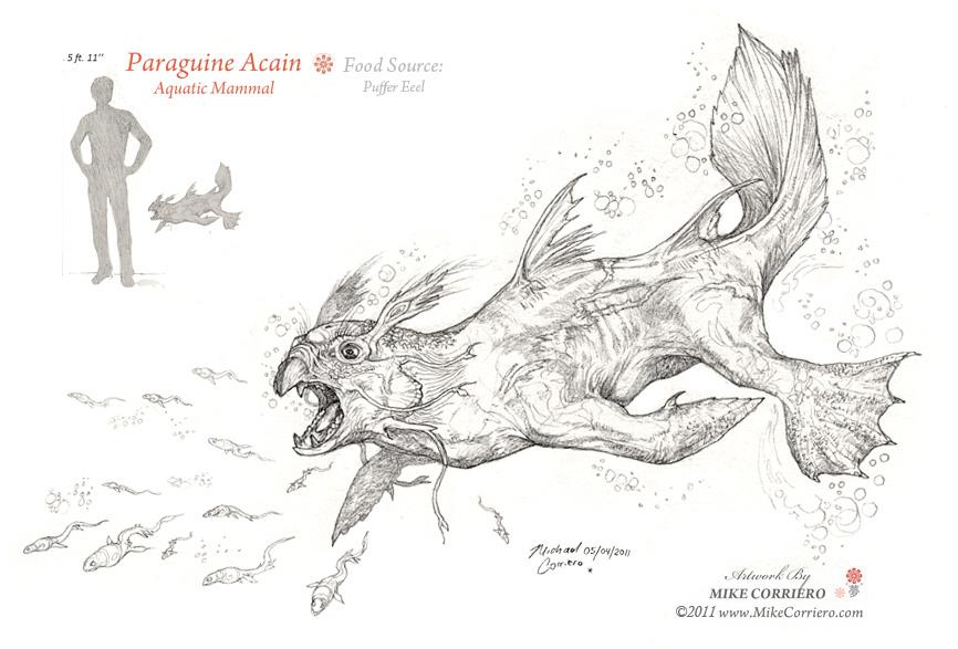 Paraguine Acain by MIKECORRIERO