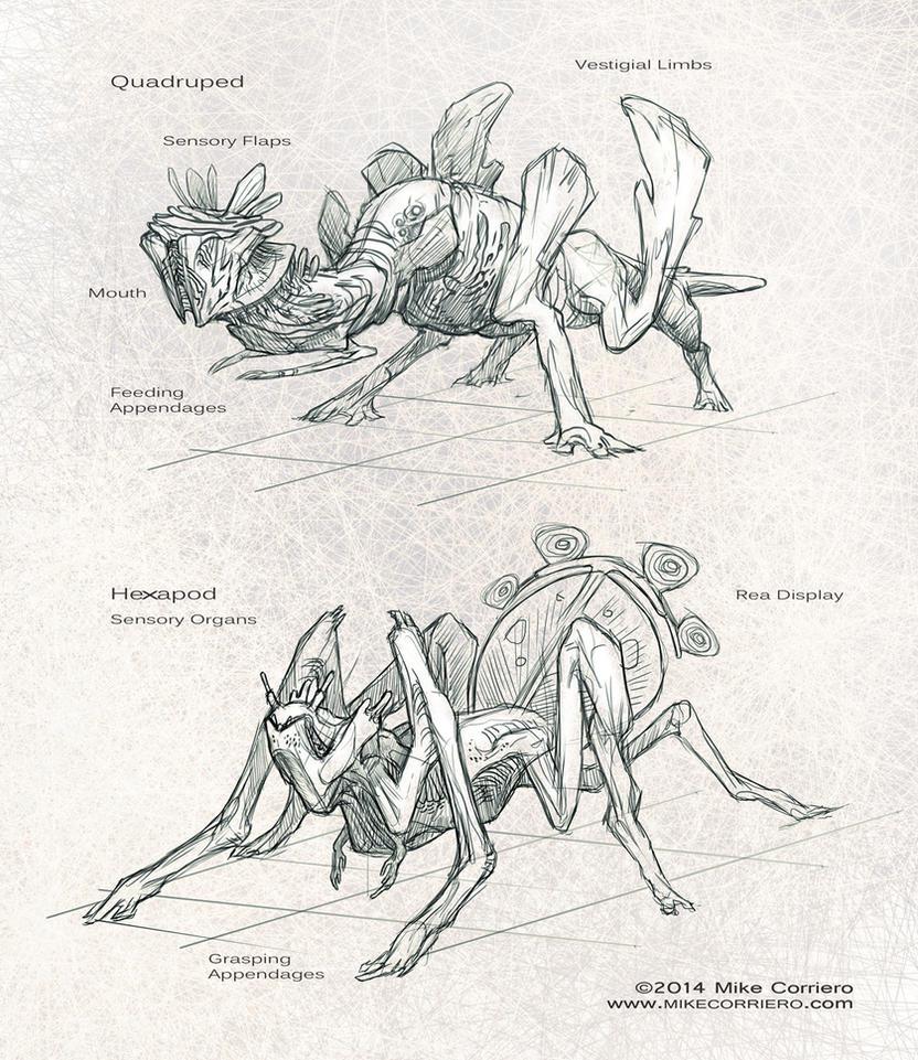 Aliens-01-02 Sketch Explore by MIKECORRIERO
