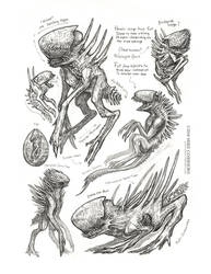 Creature Sketch Page Xenomorphs by MIKECORRIERO