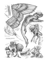 Creature Sketch Page Xenomorphs 02 by MIKECORRIERO