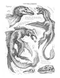 Creature Sketch Page Ogopogo by MIKECORRIERO