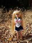BCG: Princess Sailor Moon (Custom doll clothes) by Leaf-nin