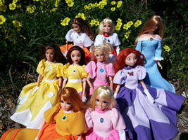 Princesses Unite! by Leaf-nin