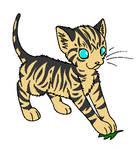 Warrior cat OC: Brightkit