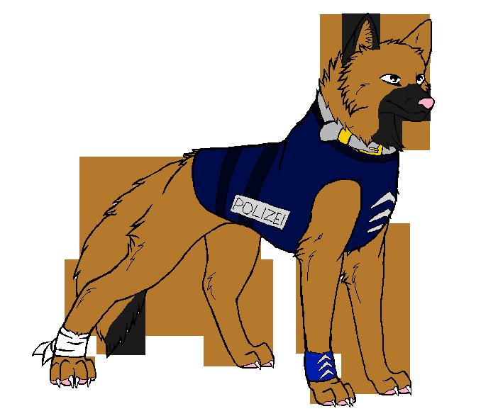 Watch Dogs  Police Uniform