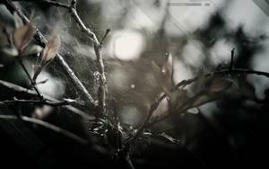 Parasitizm by PixelDazed