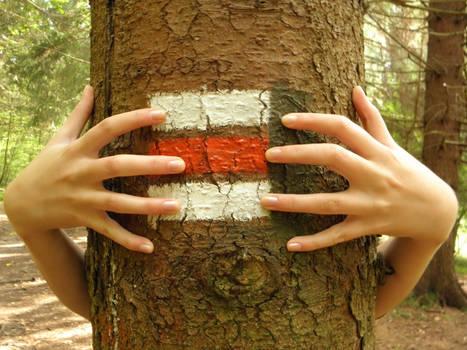 Hidden behind a tree