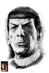 spock. by RobertoBizama