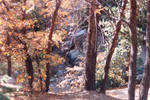 008 Lake Arrowhead CA
