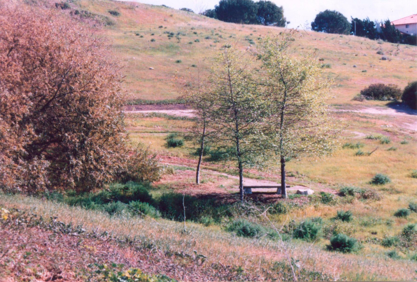 022 Hesse Park-Palos Verdes CA by J2theStock