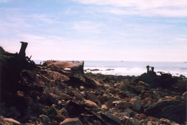 025 The Beach-Palos Verdes CA by J2theStock