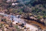 027 Stream - Sabino Canyon AZ