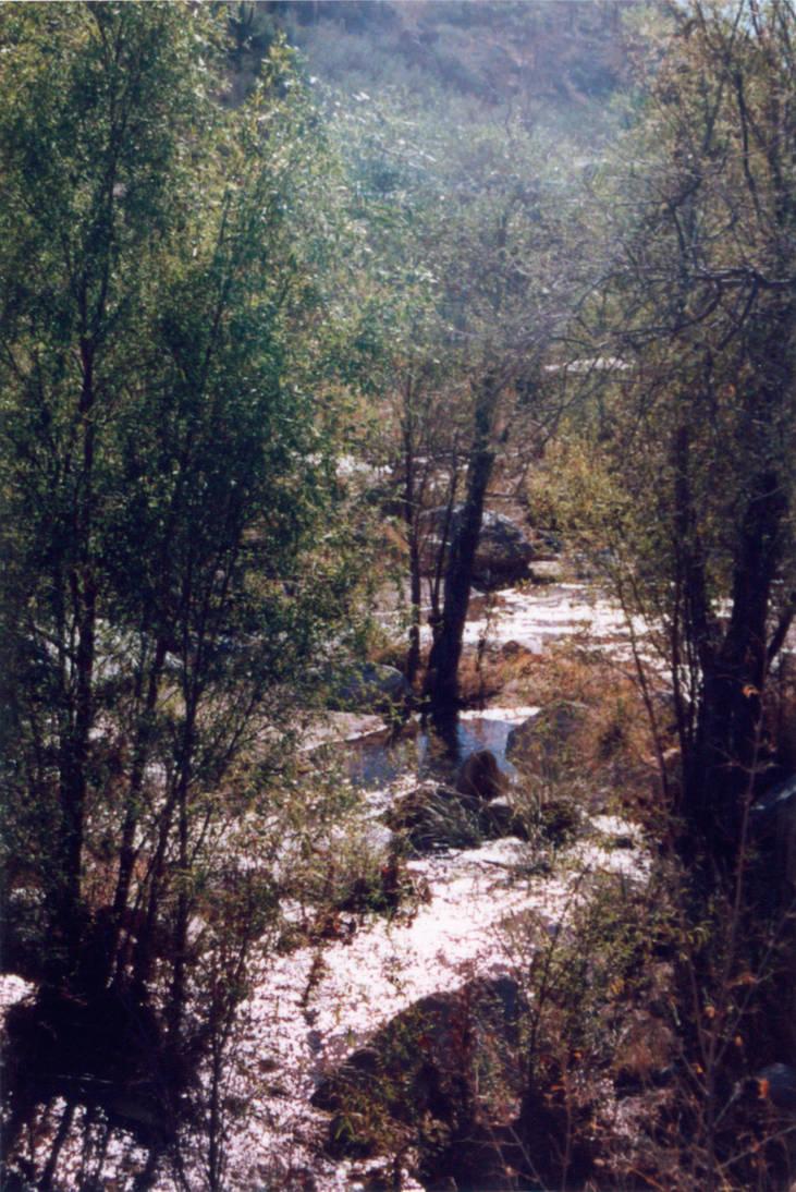 029 Sabino Canyon AZ by J2theStock