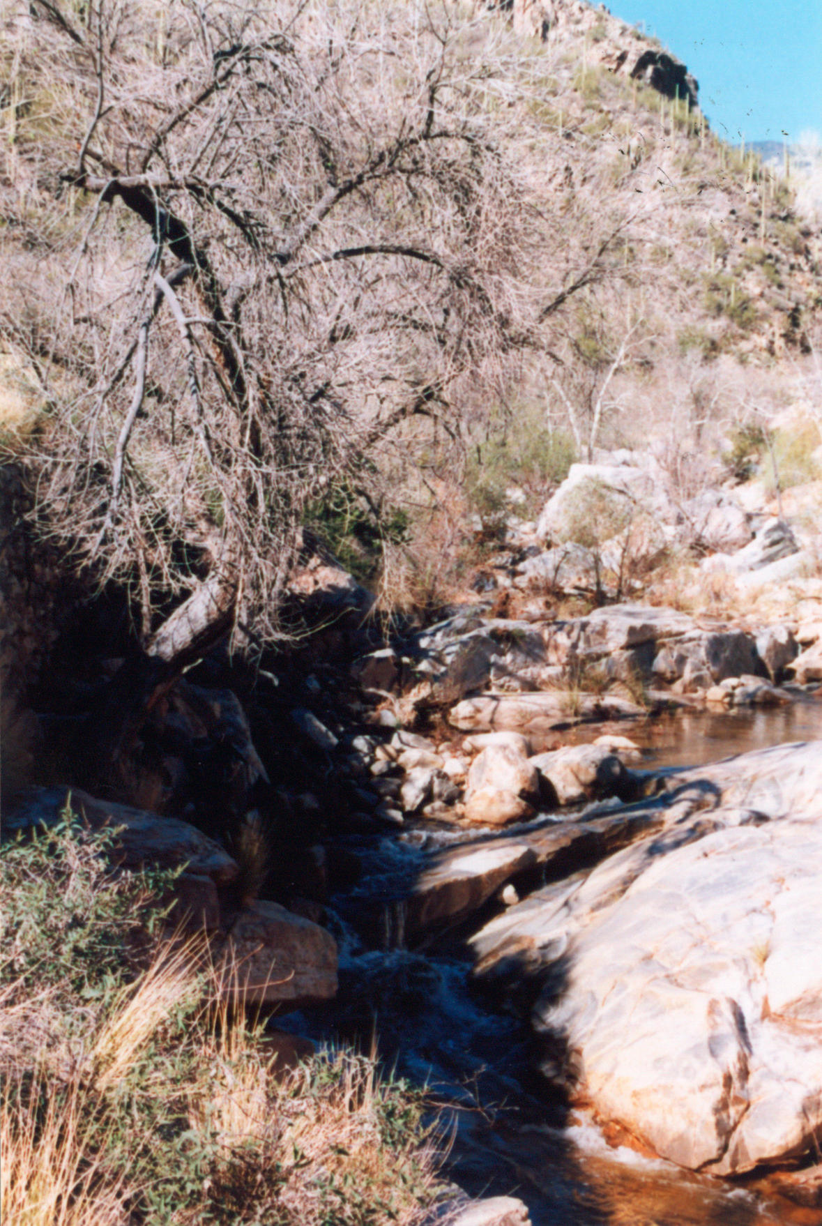 031 Stream - Sabino Canyon AZ by J2theStock