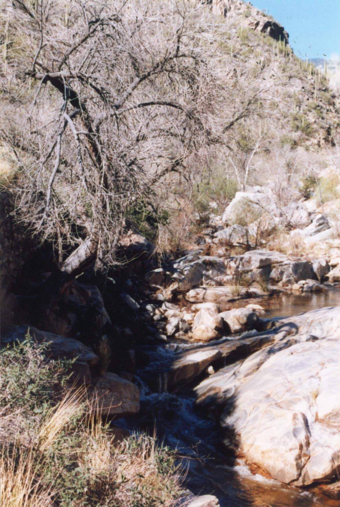 031 Stream - Sabino Canyon AZ by J2theStock