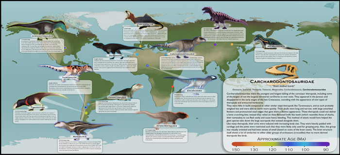 Carcharodontosauridae Poster Project