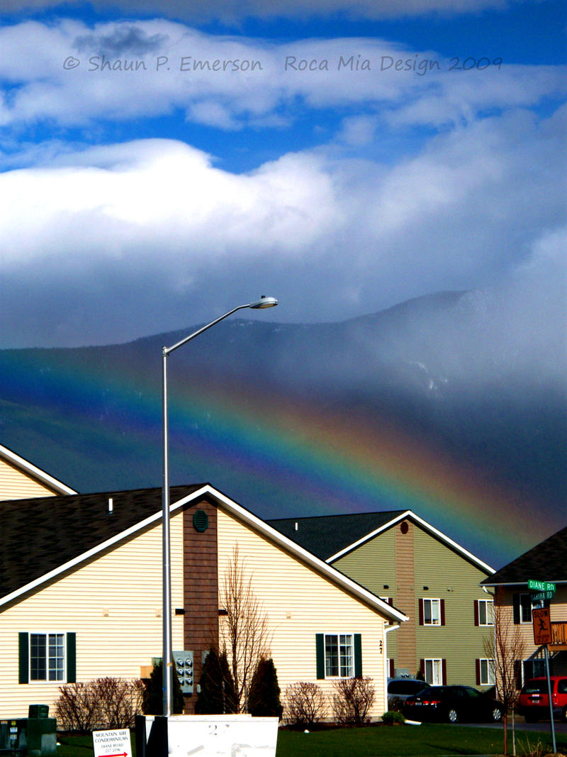 Rainbow by Dreamz-of-Twilight