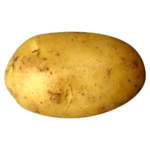 badflippy's Profile Picture
