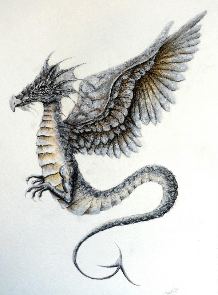 dragon illustration by sugarkoma -#main