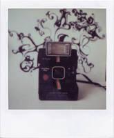 polaroid 1 by AliceInMars