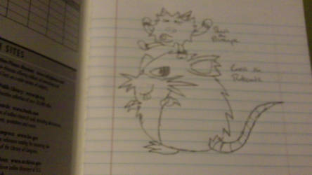Carrot the Raticate and Peach the Primeape by xXPsychicRainbowsXx