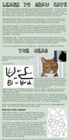 Cat Tutorial: Heads