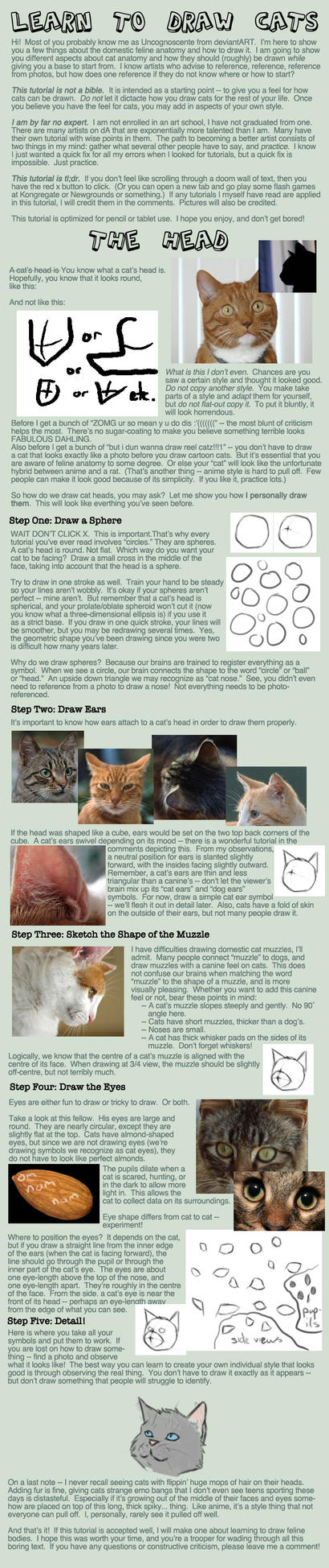 Cat Tutorial: Heads by Uncognoscente