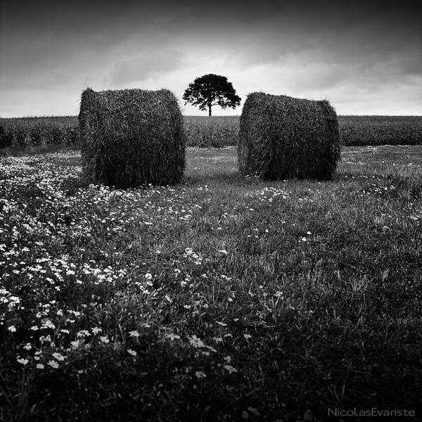Entre Deux by NicolasEvariste
