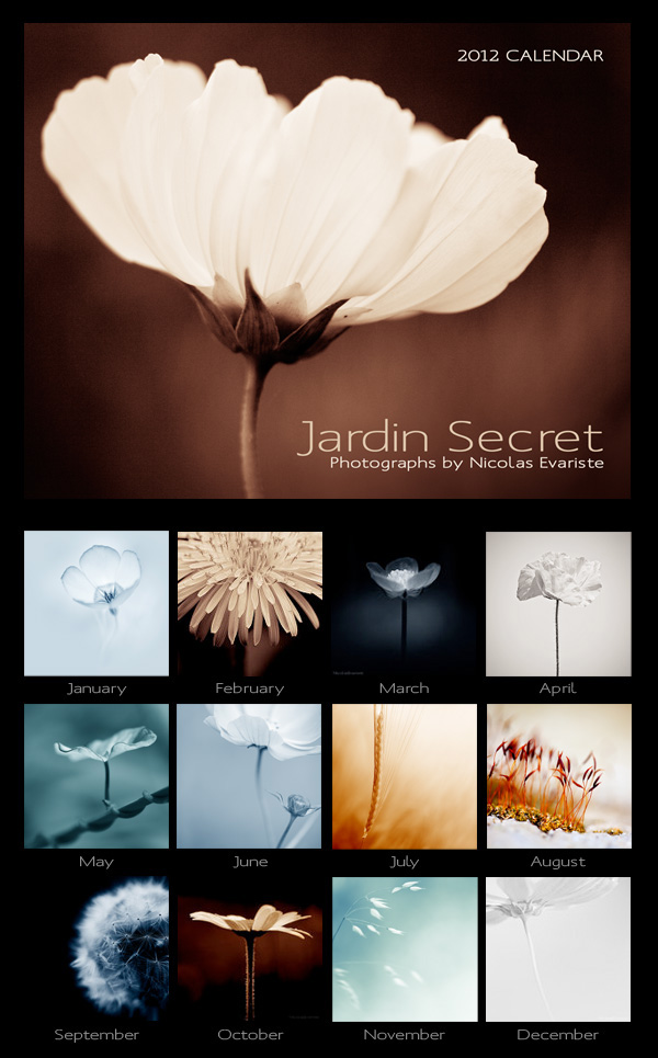 Jardin Secret - 2012 Calendar by NicolasEvariste