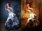 Lady Scarlett Before After